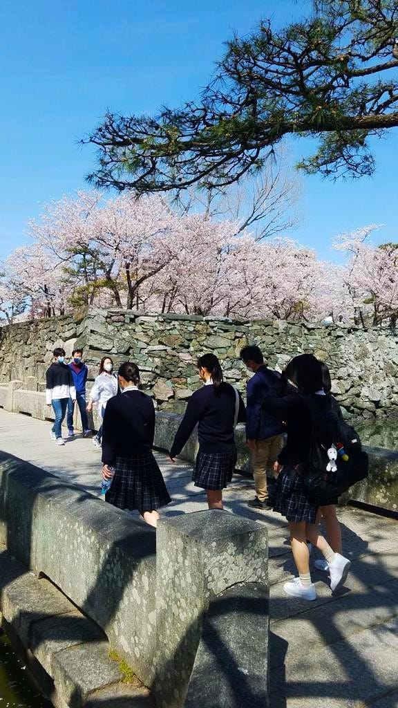 sistemul de educatie japonez
